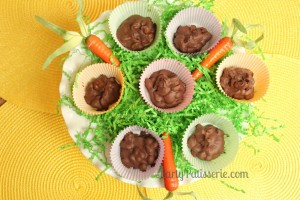 Chocolate Peanut Candy