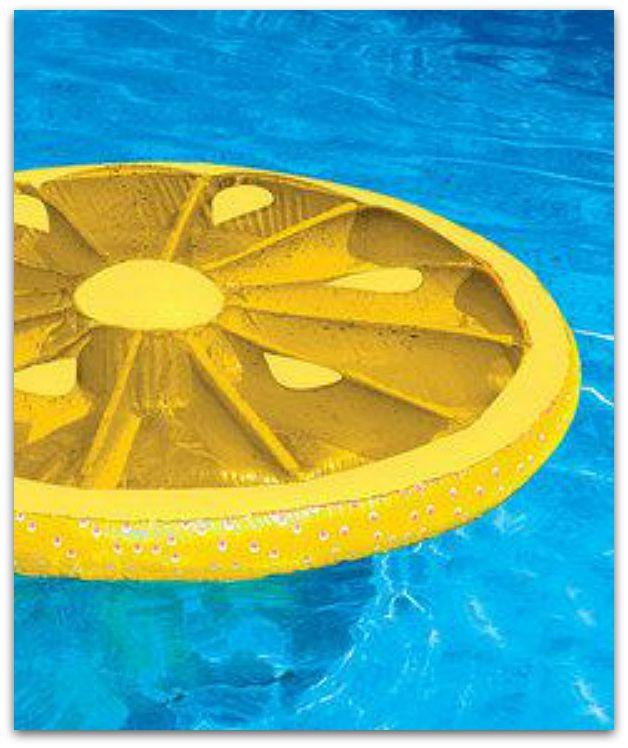 Lemon_Slice_Float
