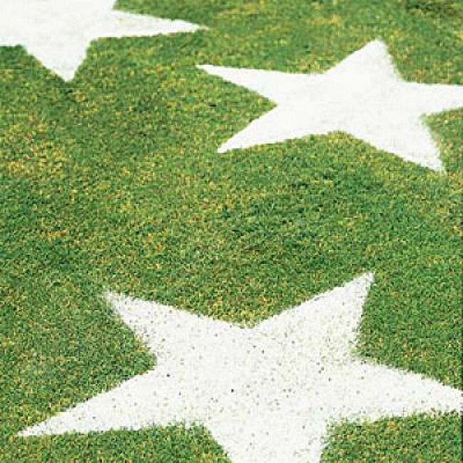 $th_of_July_Lawn_Stars